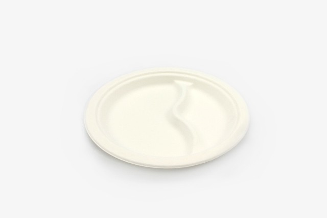 ZJP8.75B 纸浆两格圆盘 直径21.5cm 500只