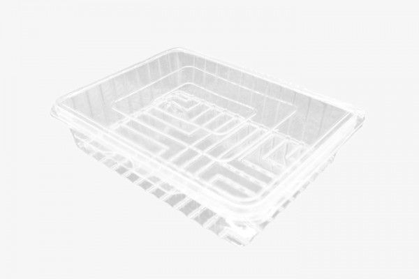 CSF450 透明塑料盒连盖 200只